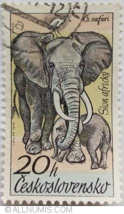 Imaginea #1 a 20 Haleru 1976 - Elefanți