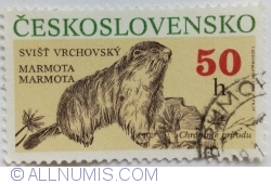 Imaginea #1 a 50 Haleru 1990 - Marmota marmota