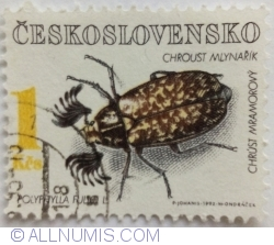 Image #1 of 1 Kčs 1992 - Polyphylla fullo
