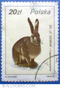 Image #1 of 20 zloty 1986 - Lepus europeaus