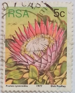 Image #1 of 5 Cents 1977 - Protea cynaroides