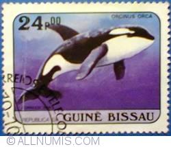 Imaginea #1 a 24 pesos 1984 - Orcinus orca