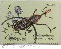 Image #1 of 1 Centavo 1982 - Rhina oblita