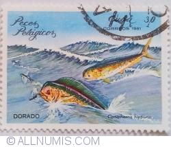 Image #1 of 30 Centavos 1981 - Pește-delfin (Coryphaena hippurus)