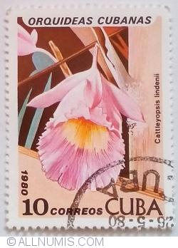 Image #1 of 10 Centavos 1980 - Cattleyopsis lindenii