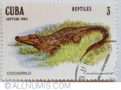 Image #1 of 3 Centavos 1982 - Crocodilul cubanez (Crocodylus rhombifer)