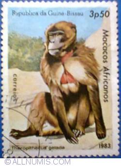 Imaginea #1 a 3,50 pesos 1983 - Theropithecus gelada