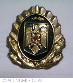 Hat badge - Ministry of Interior