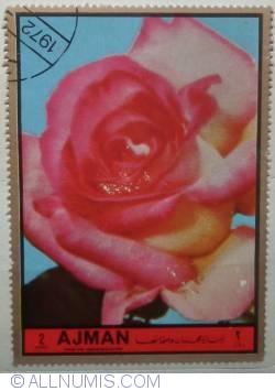 Image #1 of 2 Riyals 1969 Roses