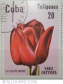 Image #1 of 20 centavos 1982-Tulipanes- La tulipe noire