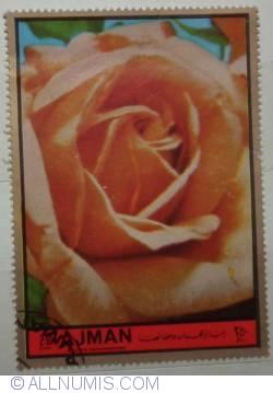 Image #1 of 2.50 Riyals 1969- Roses