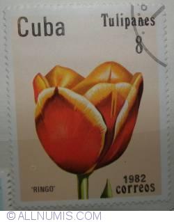 Image #1 of 8 centavos 1982-Tuipanes-Ringo