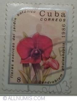 Image #1 of 8 centavos 1986 Dendrobium phalaenopsis
