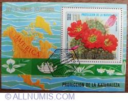 Image #1 of 130 Peseta 1974 - Flori și Cactusi (I) - Aylostera kupperiana