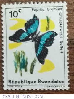 Image #1 of 10 Santime 1965 - Fluturi - Coadă de rândunică cu bandă verde (Papilio bromius)