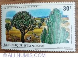 Image #1 of 30 Santime 1975 - Protecția naturii - Antilope și zebre în savană