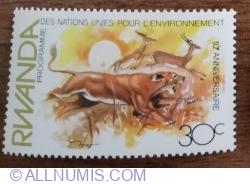 Image #1 of 30 Santime 1982 -  Animale - Leu (Panthera leo), Impala (Aepyceros melampus)