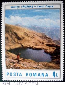 4 Lei - Fagaras Mountains - Capra Lake
