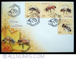 Image #1 of Honey bees
