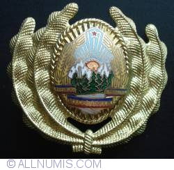 Romania Officer cap badge