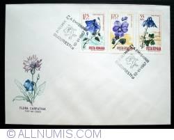 Image #1 of Carpathian Flora