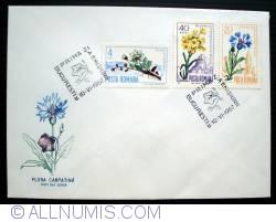 Image #2 of Carpathian Flora