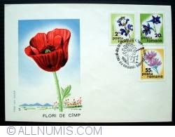 Image #2 of Field flowers