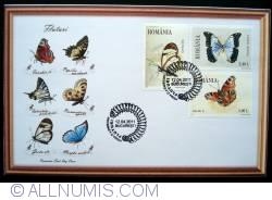 Image #2 of Butterflies