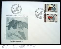 Image #1 of Bird of paradise