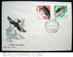 Image #2 of Birds of prey