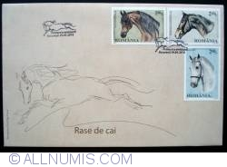 Image #1 of Horse breeds