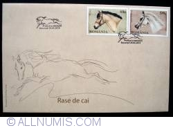 Image #2 of Horse breeds