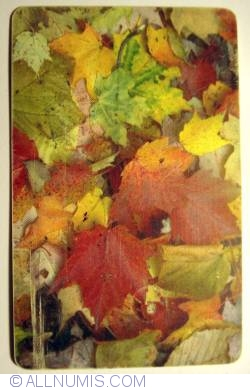 Image #1 of Autumn Leaves (2)