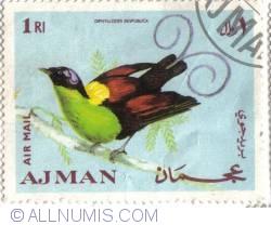 Image #1 of 1 Riyal  Wilson's Bird-of-paradise