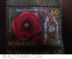 0,60 L - Lei Românesc- Field Poppy (Papaver rhoeas)