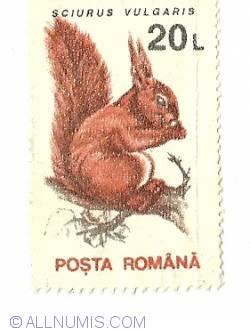 20 Lei 1993 Squirrel (Sciurus vulgaris)
