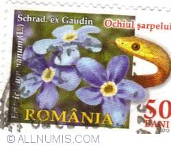 Image #1 of 50 Bani - Ochiul şarpelui