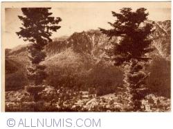 Image #1 of Poiana Țapului - General view (1950)
