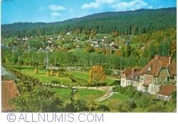 Image #1 of Poiana Țapului - View towards Zamora