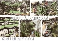 Image #1 of Cluj - Botanical Garden