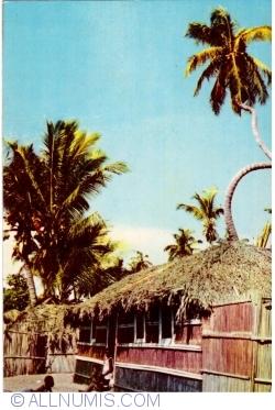 Image #1 of Luanda - Fishing hut at Ilha do Mussulo
