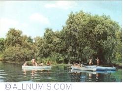 Image #1 of In the Danube Delta