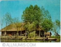 Image #1 of Fishery in the Danube Delta (1973)