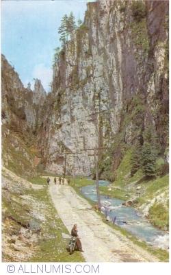 Image #1 of Dâmbovicioara Gorges