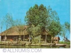 Image #1 of Fishery in the Danube Delta (1972)
