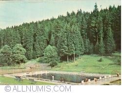 Image #1 of Topliţa - Bradul Resort (1974)