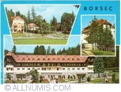Image #1 of Borsec (1973)