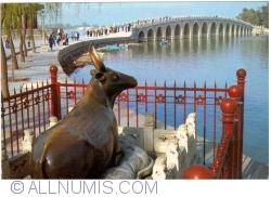Beijing - Summer Palace (颐和园) - Bronze ox