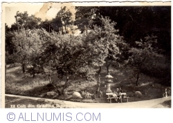 Image #1 of Cluj - Botanical Garden. Corner of Japanese Garden (1937)