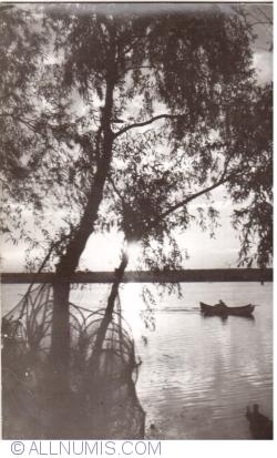 Image #1 of Danube Delta - Sunset (1966)
